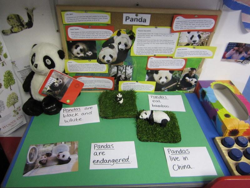 Pandas Project