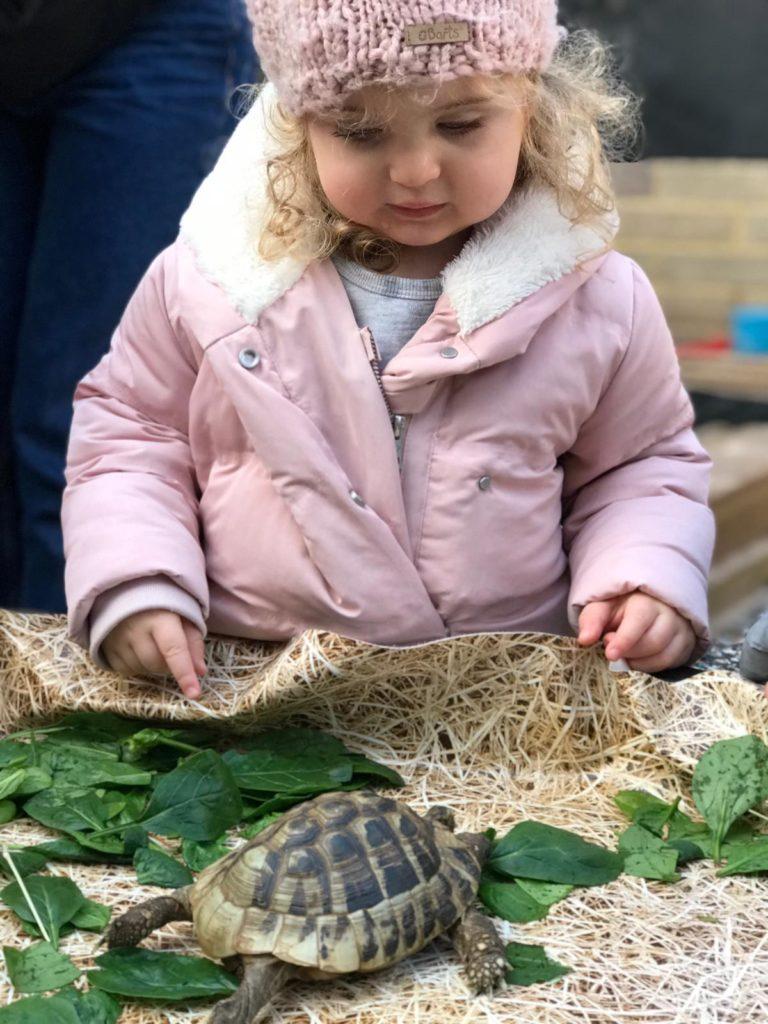 kerens-nursery-playing-child